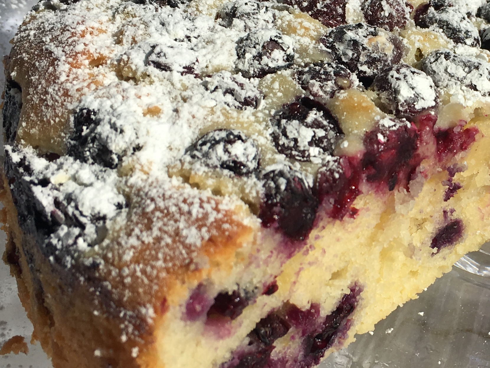 Homemade Blueberry cake with powdered sugar on top